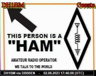 DBØQF image#11